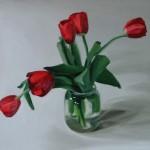 55 tulipán